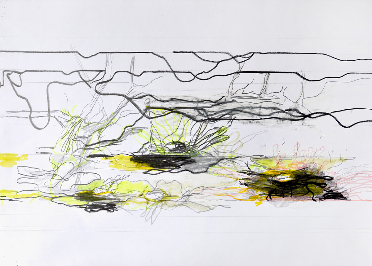 Michael Picke | Drawing | seerosen 05