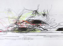 Michael Picke | Drawing | lily drones