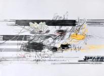 Michael Picke | Drawing | seerosen 03