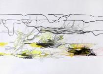 Michael Picke | Drawing | seerosen 05