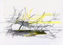 Michael Picke | Drawing | st 10